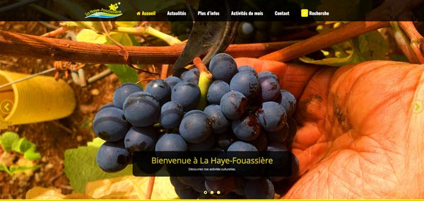 Illustration La haye-Fouassière